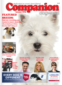 Companion Dog World Summer 2016 Front Cover
